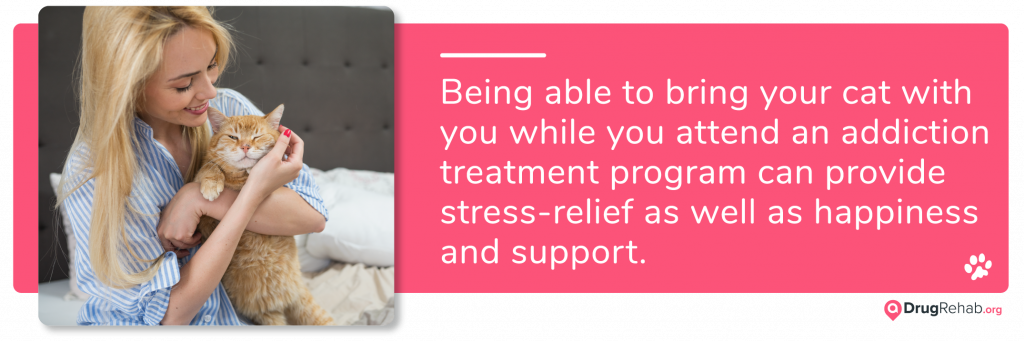 Being able to bring your cat with you while you attend an inpatient drug and alcohol addiction treatment program can provide stress-relief
